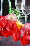 Tulips e fizz fotos de stock royalty free