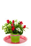 Tulips e Helleborus vermelhos Imagens de Stock