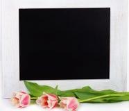Tulips e mensagem em branco Fotos de Stock Royalty Free