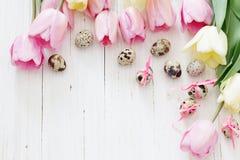 Tulips e ovos de easter Foto de Stock