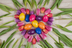 Tulips easter background Stock Photo