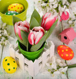 Tulips and Easter colored eggs Royalty Free Stock Image