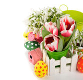 Tulips and Easter colored eggs Stock Photography