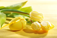 Tulips with easter egg Royalty Free Stock Image
