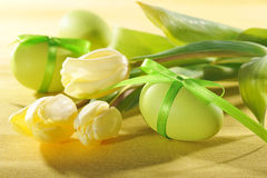 Tulips with easter egg Royalty Free Stock Photography