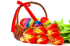 Tulips and Easter eggs. Stock Photos