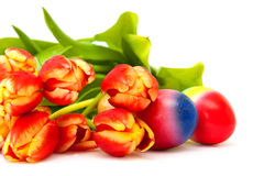 Tulips and Easter eggs. Royalty Free Stock Image
