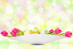 Tulips and easter eggs before bokeh background. Tulips and easter eggs in a white bowl on white background Stock Images