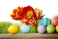 Tulips and easter eggs Royalty Free Stock Photography