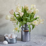 Tulips and Eggs. Still Life with Tulips in old milk can and eggs Royalty Free Stock Photos