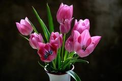 Tulips em um vaso Fotografia de Stock Royalty Free