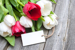 Tulips with an empty tag Royalty Free Stock Photo