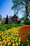 Tulips Festival Royalty Free Stock Photo