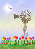 Tulips field in the farmland. Illustration of tulips field in the farmland Royalty Free Stock Image