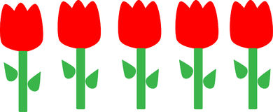 Tulips. Five red tulips in a row Stock Image