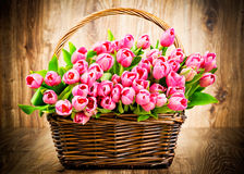 Tulips flowers Royalty Free Stock Photo