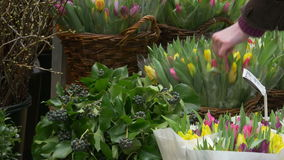 Tulips and flowers in Amsterdam 4K. A woman is buying a bunch of tulips at the the floating flower market. Amsterdam. The Netherlands stock footage