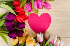 The tulips flowers arranged with copyspace for your text Stock Photos