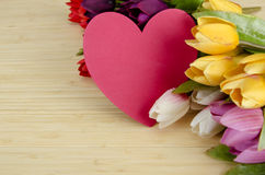The tulips flowers arranged with copyspace for your text Stock Photography