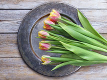 Tulips flowers on a copper tray. Tulips flowers on a wood background stock image