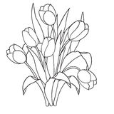 Tulips , flowers, ornamental black and white coloring pages. stock illustration