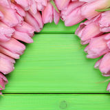 Tulips flowers in spring or mothers day with copyspace Royalty Free Stock Photography