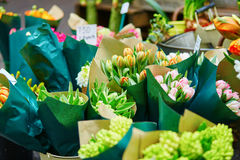Tulips at the flowers wholesale market Royalty Free Stock Photography