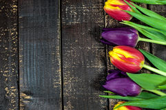 Tulips flowers wooden board Stock Photography