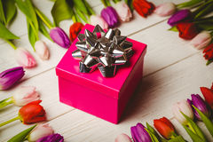 Tulips forming frame around gift Stock Image