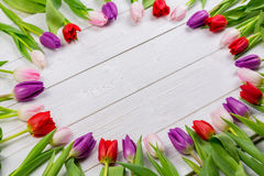 Tulips forming frame Stock Photos