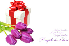 Tulips and gift box Royalty Free Stock Photography
