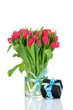 Tulips and gift box with blue ribbon Royalty Free Stock Images