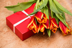 The tulips and gift box on cork floor. The tulips and gift box on a cork floor Stock Image