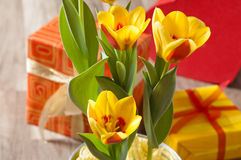 tulips and gift boxes Royalty Free Stock Photography