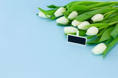 White tulips and gift tag on a blue background, copy space. Holiday spring concept, International women`s day, Mother`s Day stock photos