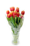 Tulips in glass vase Stock Images