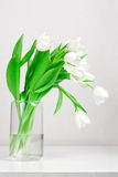 Tulips in glass vase. Against gray background. Still life Royalty Free Stock Photo
