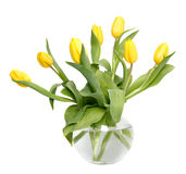 Tulips in a glass vase Royalty Free Stock Image