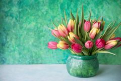 Tulips in glass vase. Beautiful spring flowers tulips in glass vase stock photography