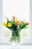 Tulips in glass vase Royalty Free Stock Photos
