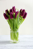 Tulips in a glass vase Stock Photos