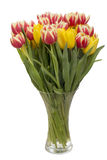 Tulips in a glass vase Royalty Free Stock Photography