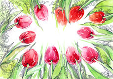 Tulips. Group ot beutiful red tulip flowers Royalty Free Stock Photography