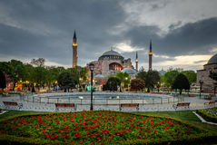 Tulips and Hagia Sophia in Isanbul,Turkey royalty free stock photos