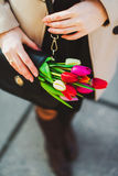 Tulips in a handbag Stock Photos