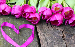 Tulips and heart for Valentine's Day Royalty Free Stock Photos