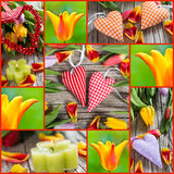 Tulips and hearts collage Royalty Free Stock Images