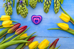 Tulips and hyacinths Stock Photography