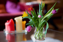Tulips in interior Stock Images