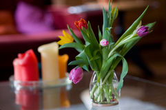 Tulips in interior Royalty Free Stock Photography